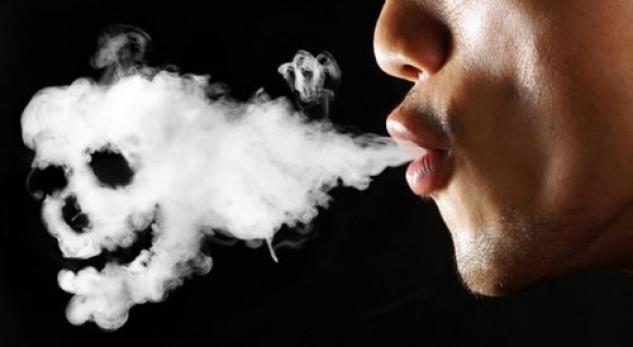 Image result for duhanpirës