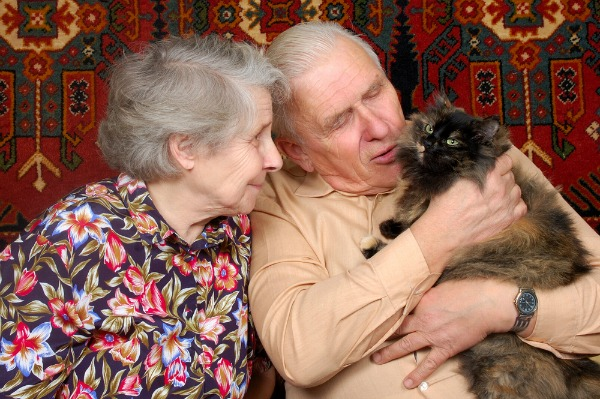 couple-with-cat_1