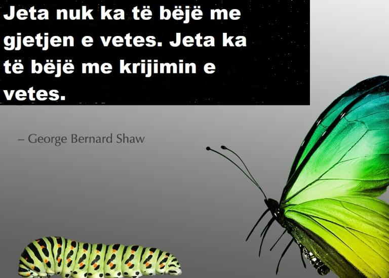 create-self-butterfly