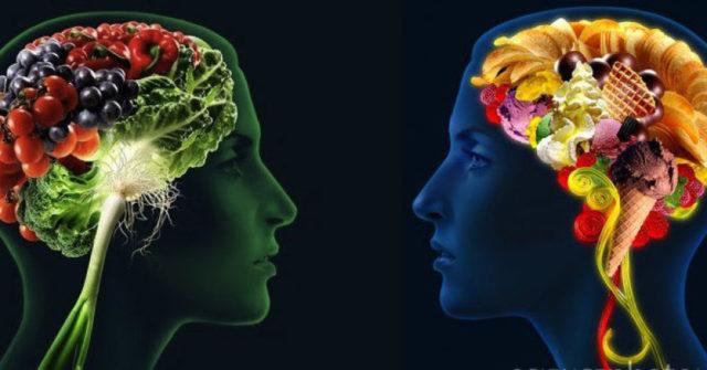 cibo-e-cervello-640x335